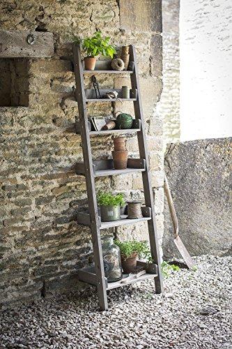 garden ladder shelves