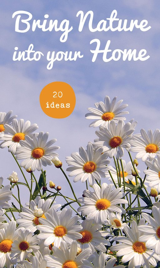 20 ideas to bring nature into your home