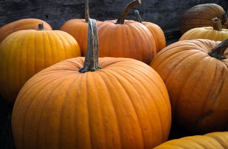 9 tips for a green Halloween