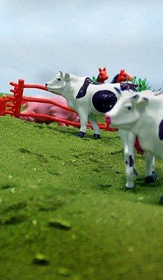 Plastic farm toy cow