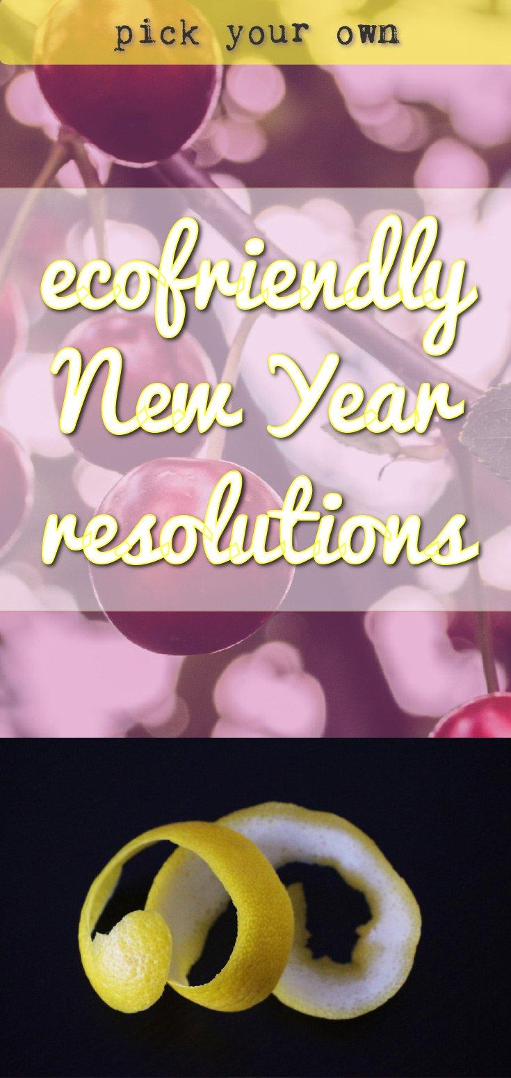 Ecofriendly new year resolutions