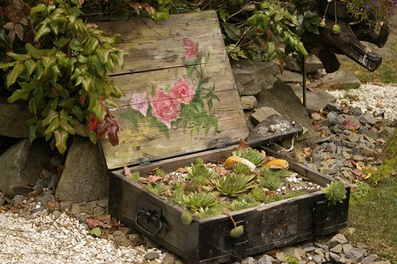 Repurposed wooden chest garden container