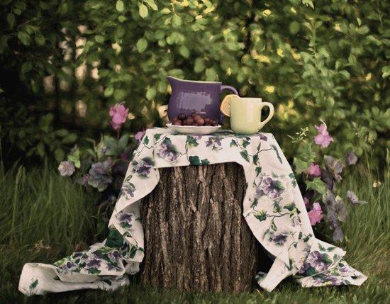 Herbal tea on a tree stump