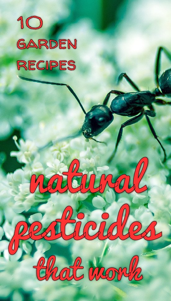 Natural pesticides