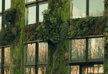 benefits of a vertical garden