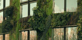 benefits of a vertical garden