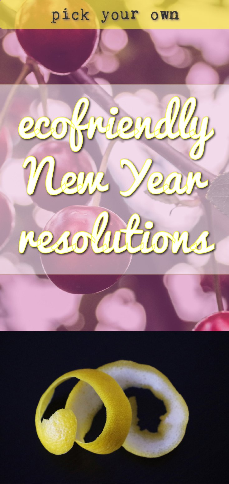Ecofriendly new year resolutions