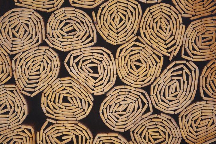 Bamboo organic pattern