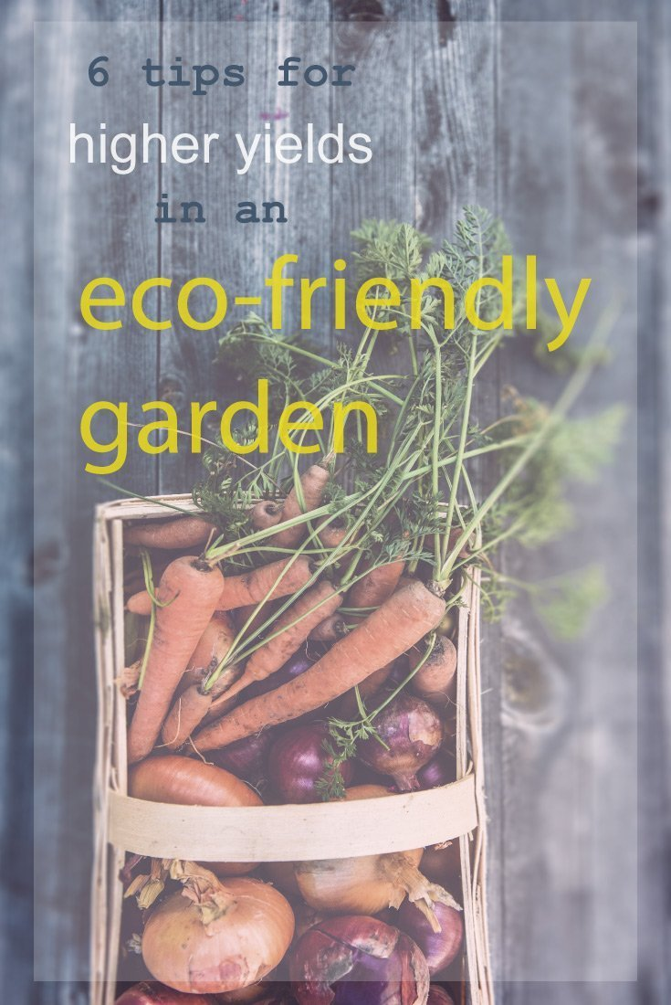 Eco-friendly-garden